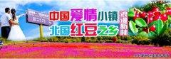 """中国爱情小镇·北国红豆之乡 大兴安岭新林""""三行情书""""全国征稿"""